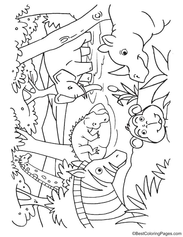 Animals drinking water coloring page   Download Free ...