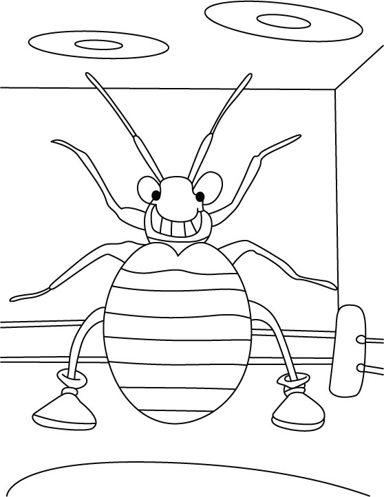 galjoen coloring pages for kids - photo #44
