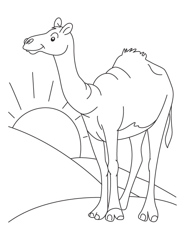 desert coloring pages for preschoolers - photo#17