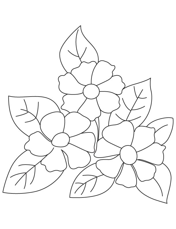 small flower coloring pages - photo#31