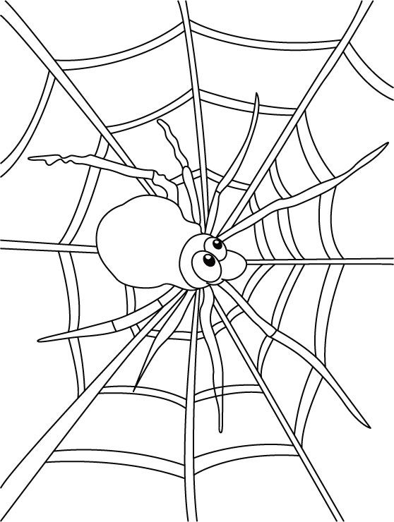Halloween Spider Web Coloring Pages Web Coloring Pages
