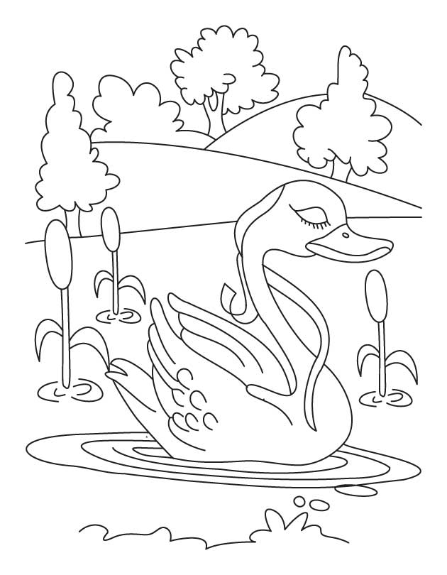 Swan in lake coloring page download free swan in lake for Lake coloring pages
